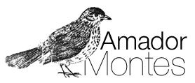 Amador Montes